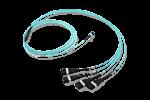 Fanout Cable MTP®-URM NG P8